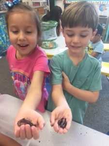 science and discovery in preschool
